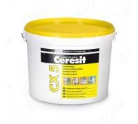 Цемент Церезит (Ceresit) CX5 монтажный и водостанавливающий, 2кг